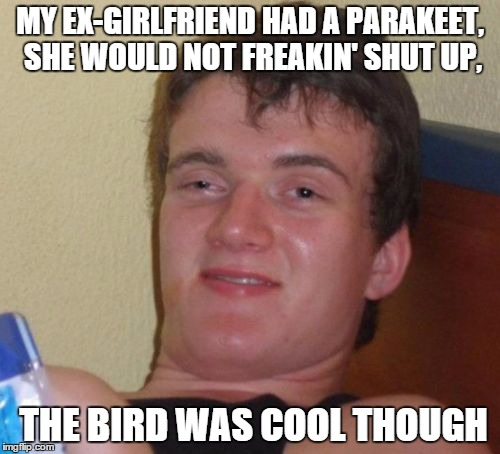 10 Guy Meme | MY EX-GIRLFRIEND HAD A PARAKEET, SHE WOULD NOT FREAKIN' SHUT UP, THE BIRD WAS COOL THOUGH | image tagged in memes,10 guy | made w/ Imgflip meme maker