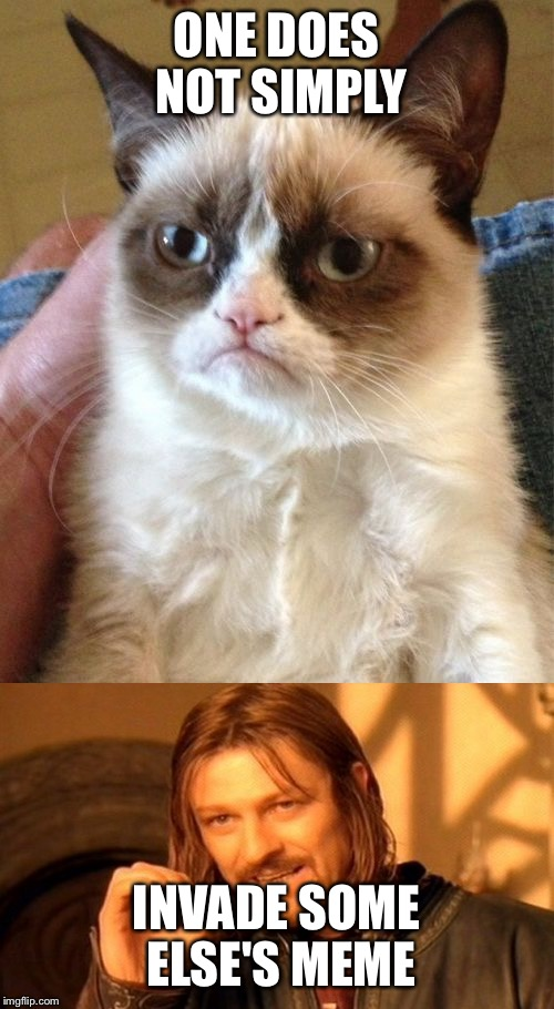 Not Funny Cat Meme : Grump steals imgflip