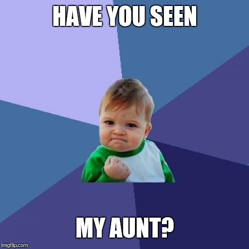 Success Kid Meme | HAVE YOU SEEN MY AUNT? | image tagged in memes,success kid | made w/ Imgflip meme maker