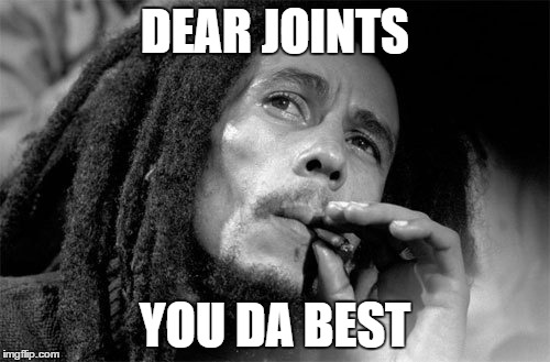 Bob Marley Joint |  DEAR JOINTS; YOU DA BEST | image tagged in bob marley | made w/ Imgflip meme maker
