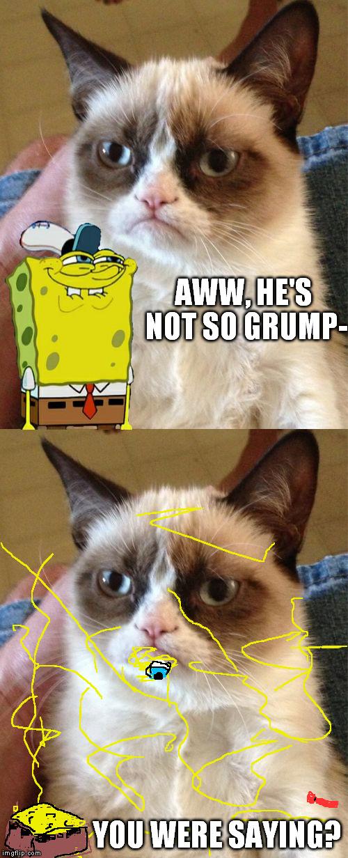 Reason Cat Meme