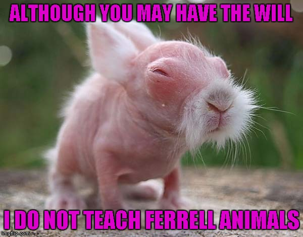 ALTHOUGH YOU MAY HAVE THE WILL I DO NOT TEACH FERRELL ANIMALS | made w/ Imgflip meme maker