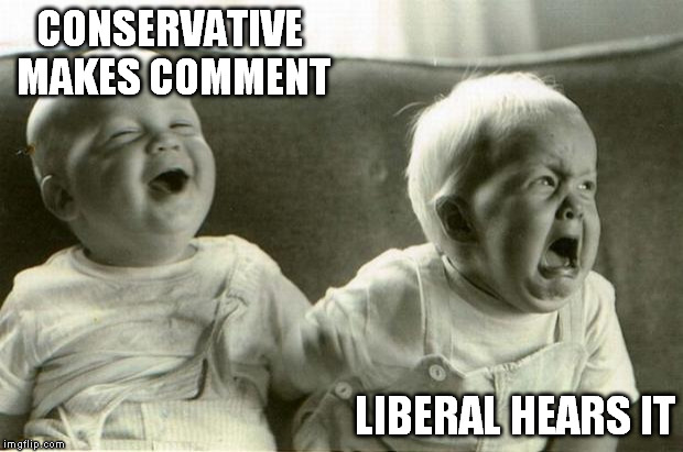 conservative comments... | CONSERVATIVE MAKES COMMENT LIBERAL HEARS IT | image tagged in happysadbabies | made w/ Imgflip meme maker