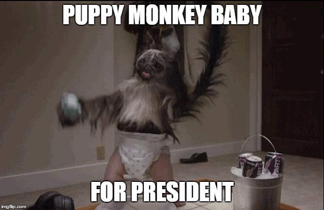 Puppy monkey baby  |  PUPPY MONKEY BABY; FOR PRESIDENT | image tagged in puppy monkey baby | made w/ Imgflip meme maker