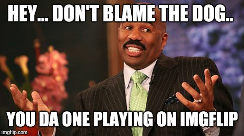 Steve Harvey Meme | HEY... DON'T BLAME THE DOG.. YOU DA ONE PLAYING ON IMGFLIP | image tagged in memes,steve harvey | made w/ Imgflip meme maker