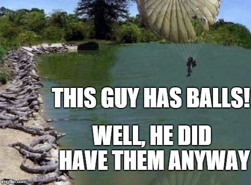 This takes balls! |  THIS GUY HAS BALLS! WELL, HE DID HAVE THEM ANYWAY | image tagged in alligator,parachute,balls | made w/ Imgflip meme maker