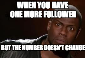 Kevin Hart Meme | WHEN YOU HAVE ONE MORE FOLLOWER BUT THE NUMBER DOESN'T CHANGE | image tagged in memes,kevin hart the hell | made w/ Imgflip meme maker