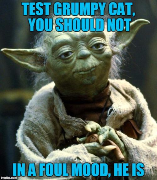 Star Wars Yoda Meme | TEST GRUMPY CAT, YOU SHOULD NOT IN A FOUL MOOD, HE IS | image tagged in memes,star wars yoda | made w/ Imgflip meme maker