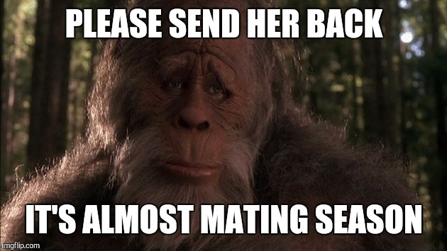 Sad Sasquatch | PLEASE SEND HER BACK IT'S ALMOST MATING SEASON | image tagged in sad sasquatch | made w/ Imgflip meme maker
