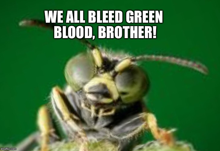 MR GREEN BUG | WE ALL BLEED GREEN BLOOD, BROTHER! | image tagged in mr green bug | made w/ Imgflip meme maker