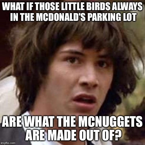 Conspiracy Keanu Meme | WHAT IF THOSE LITTLE BIRDS ALWAYS IN THE MCDONALD'S PARKING LOT ARE WHAT THE MCNUGGETS ARE MADE OUT OF? | image tagged in memes,conspiracy keanu | made w/ Imgflip meme maker