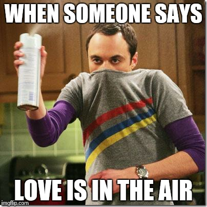 air freshener sheldon cooper |  WHEN SOMEONE SAYS; LOVE IS IN THE AIR | image tagged in air freshener sheldon cooper | made w/ Imgflip meme maker