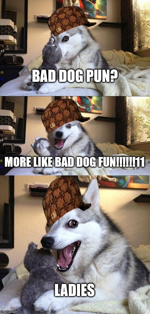 Bad Pun Dog Meme |  BAD DOG PUN? MORE LIKE BAD DOG FUN!!!!!!11; LADIES | image tagged in memes,bad pun dog,scumbag | made w/ Imgflip meme maker