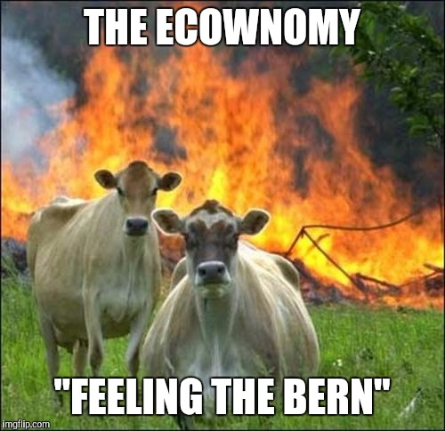 "Socialist Cows | THE ECOWNOMY ""FEELING THE BERN"" 