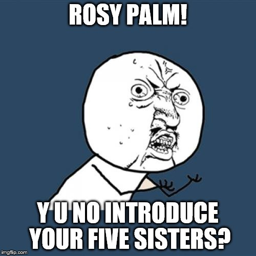 Y U No Meme | ROSY PALM! Y U NO INTRODUCE YOUR FIVE SISTERS? | image tagged in memes,y u no | made w/ Imgflip meme maker