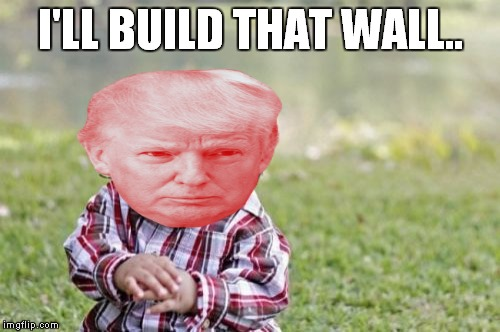 Evil Toddler Meme | I'LL BUILD THAT WALL.. | image tagged in memes,evil toddler | made w/ Imgflip meme maker