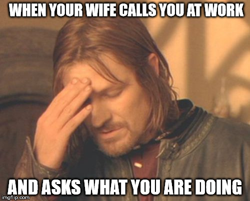 Frustrated Boromir Meme | WHEN YOUR WIFE CALLS YOU AT WORK AND ASKS WHAT YOU ARE DOING | image tagged in memes,frustrated boromir | made w/ Imgflip meme maker
