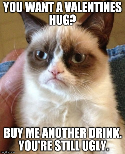 Grumpy's Valentines Day | YOU WANT A VALENTINES HUG? BUY ME ANOTHER DRINK. YOU'RE STILL UGLY. | image tagged in memes,grumpy cat | made w/ Imgflip meme maker