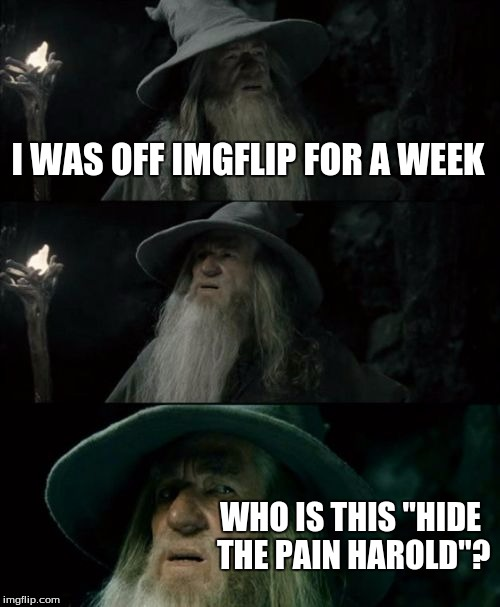 "Confused Gandalf Meme | I WAS OFF IMGFLIP FOR A WEEK WHO IS THIS ""HIDE THE PAIN HAROLD""? 