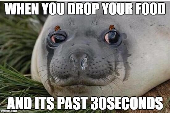 z5w0c crying seal meme generator imgflip,Seal Meme