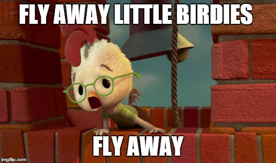 FLY AWAY LITTLE BIRDIES FLY AWAY | made w/ Imgflip meme maker
