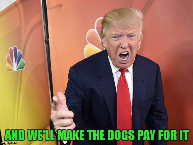 AND WE'LL MAKE THE DOGS PAY FOR IT | made w/ Imgflip meme maker