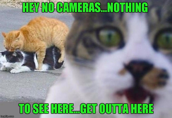 HEY NO CAMERAS...NOTHING TO SEE HERE...GET OUTTA HERE | made w/ Imgflip meme maker