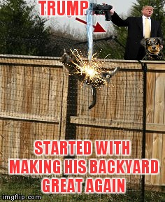 TRUMP STARTED WITH MAKING HIS BACKYARD GREAT AGAIN | made w/ Imgflip meme maker