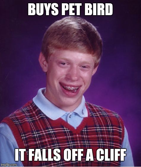 Bad Luck Brian Meme | BUYS PET BIRD IT FALLS OFF A CLIFF | image tagged in memes,bad luck brian | made w/ Imgflip meme maker