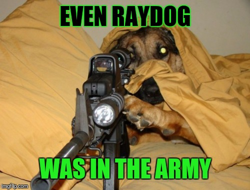 Sniper Dog | EVEN RAYDOG WAS IN THE ARMY | image tagged in sniper dog | made w/ Imgflip meme maker
