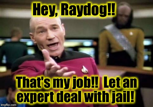 Picard Wtf Meme | Hey, Raydog!! That's my job!!  Let an expert deal with jail! | image tagged in memes,picard wtf | made w/ Imgflip meme maker
