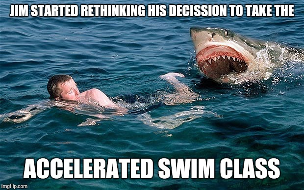 z8439 swimming with sharks memes imgflip