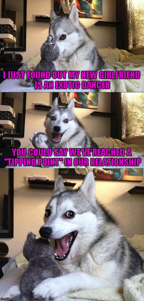 "Bad Pun Dog Meme | I JUST FOUND OUT MY NEW GIRLFRIEND IS AN EXOTIC DANCER YOU COULD SAY WE'VE REACHED A ""TIPPING POINT"" IN OUR RELATIONSHIP 