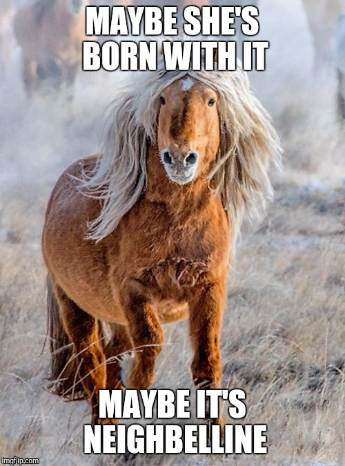 MAYBE SHE'S BORN WITH IT MAYBE IT'S NEIGHBELLINE | image tagged in funny memes,memes | made w/ Imgflip meme maker