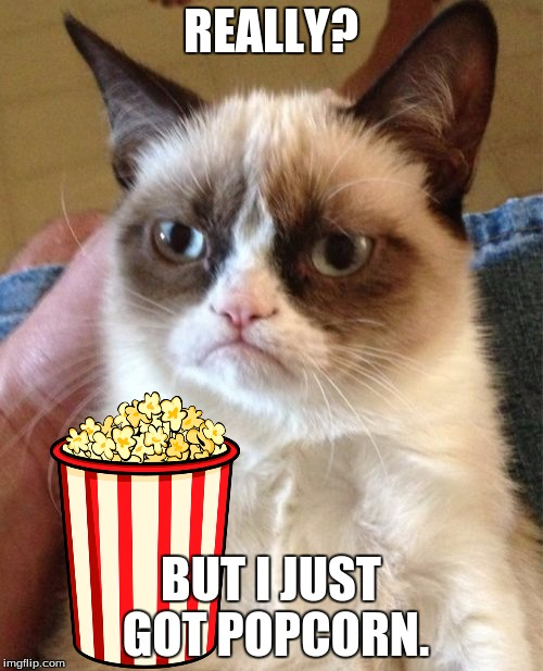 Grumpy Cat Meme | REALLY? BUT I JUST GOT POPCORN. | image tagged in memes,grumpy cat | made w/ Imgflip meme maker