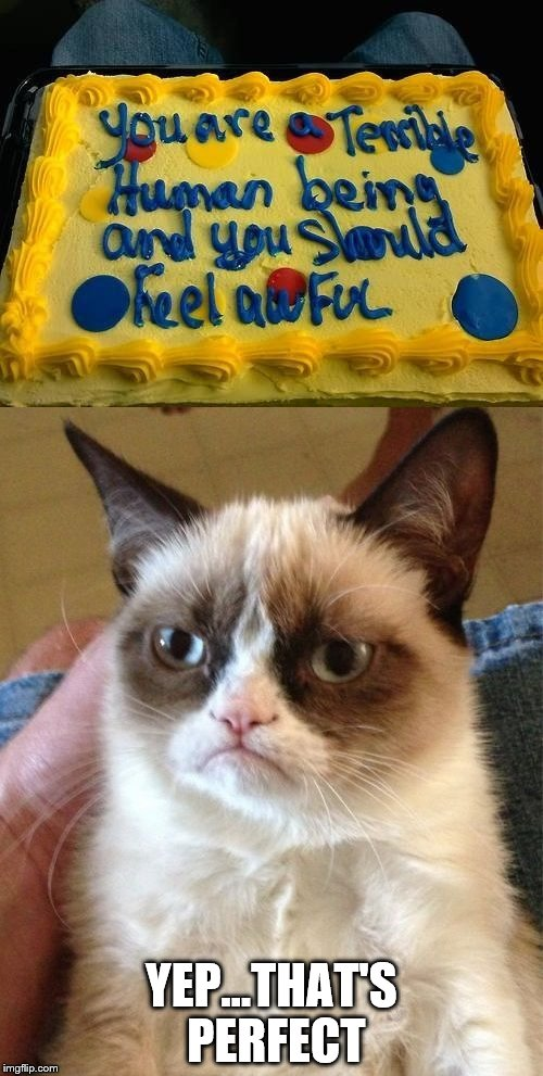 Who knew he could write? | YEP...THAT'S PERFECT | image tagged in memes,grumpy cat,cake | made w/ Imgflip meme maker