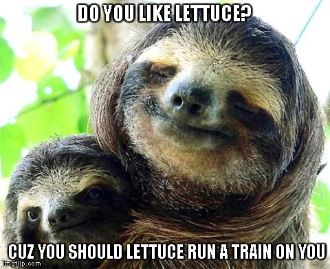 Image tagged in funny,memes,sloths - Imgflip