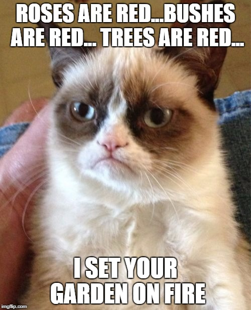 Grumpy Cat Meme | ROSES ARE RED...BUSHES ARE RED... TREES ARE RED... I SET YOUR GARDEN ON FIRE | image tagged in memes,grumpy cat | made w/ Imgflip meme maker