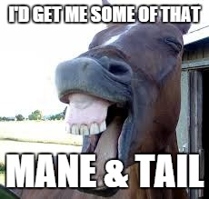 horse laugh | I'D GET ME SOME OF THAT MANE & TAIL | image tagged in horse laugh | made w/ Imgflip meme maker