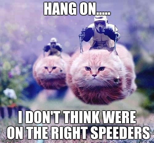 Storm Trooper Cats | HANG ON..... I DON'T THINK WERE ON THE RIGHT SPEEDERS | image tagged in storm trooper cats | made w/ Imgflip meme maker