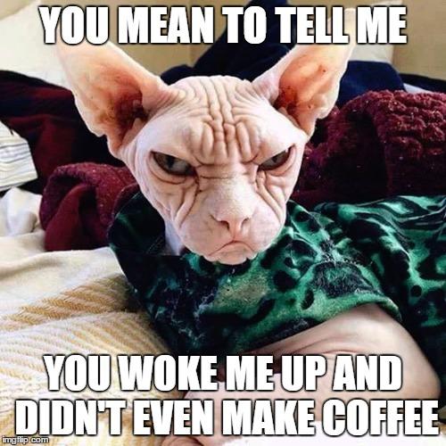 Angry Good Morning Meme : No coffee imgflip