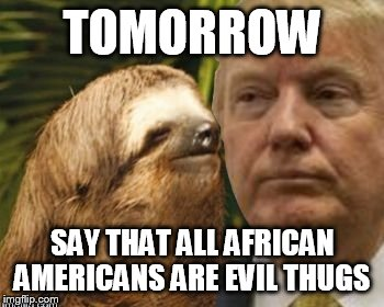 Political advice sloth | TOMORROW SAY THAT ALL AFRICAN AMERICANS ARE EVIL THUGS | image tagged in political advice sloth | made w/ Imgflip meme maker
