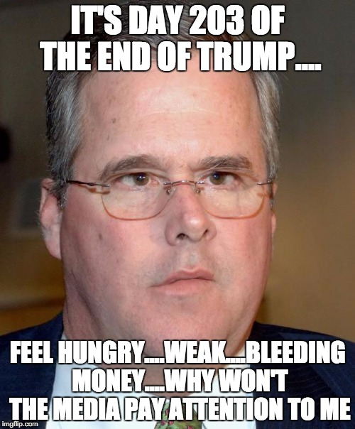 Groundhog Day Apocalypse | IT'S DAY 203 OF THE END OF TRUMP.... FEEL HUNGRY....WEAK....BLEEDING MONEY....WHY WON'T THE MEDIA PAY ATTENTION TO ME | image tagged in jeb bush,trump | made w/ Imgflip meme maker