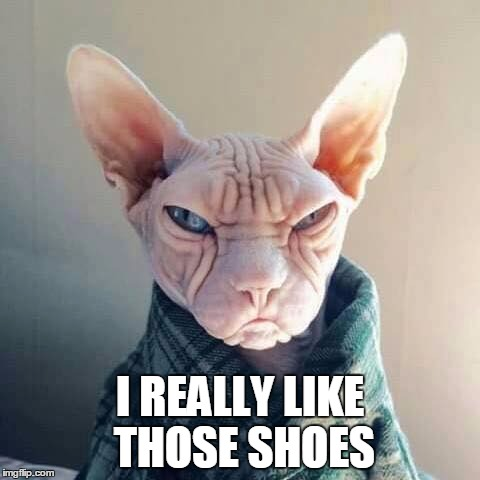 creepy cat compliments  |  I REALLY LIKE THOSE SHOES | image tagged in creepy cat,memes,grumpy cat,cats | made w/ Imgflip meme maker