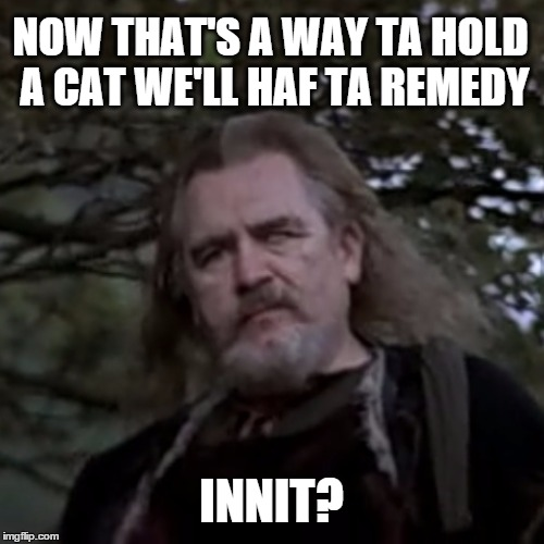 Uncle Argyle | NOW THAT'S A WAY TA HOLD A CAT WE'LL HAF TA REMEDY INNIT? | image tagged in uncle argyle | made w/ Imgflip meme maker