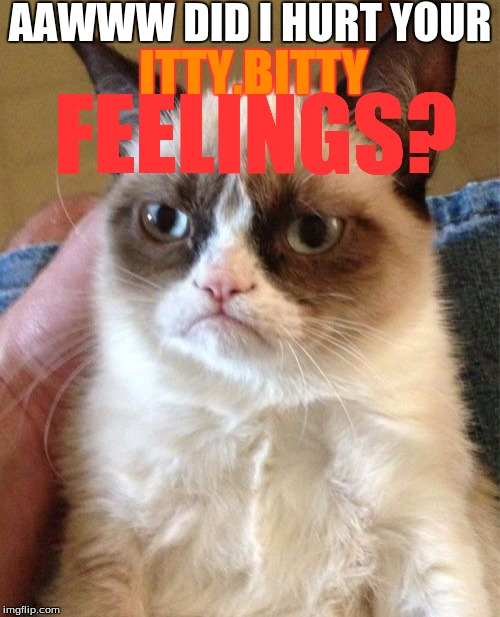 Grumpy Cat Meme | AAWWW DID I HURT YOUR ITTY,BITTY FEELINGS? | image tagged in memes,grumpy cat | made w/ Imgflip meme maker