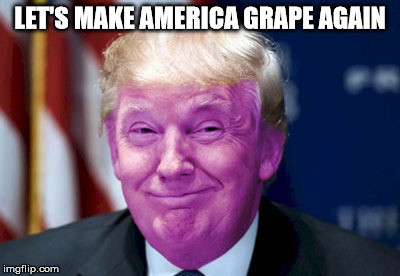 full of grapists & murderers | LET'S MAKE AMERICA GRAPE AGAIN | image tagged in grape trump | made w/ Imgflip meme maker