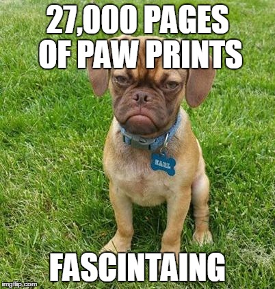 27,000 PAGES OF PAW PRINTS FASCINTAING | made w/ Imgflip meme maker