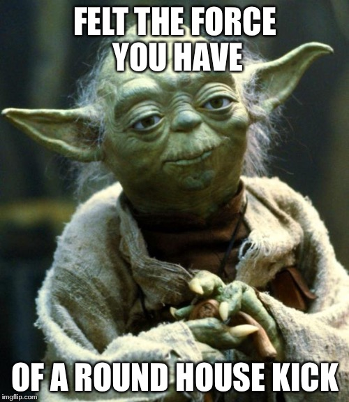 Star Wars Yoda Meme | FELT THE FORCE YOU HAVE OF A ROUND HOUSE KICK | image tagged in memes,star wars yoda | made w/ Imgflip meme maker