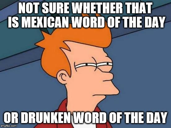 Futurama Fry Meme | NOT SURE WHETHER THAT IS MEXICAN WORD OF THE DAY OR DRUNKEN WORD OF THE DAY | image tagged in memes,futurama fry | made w/ Imgflip meme maker